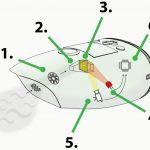 Aryballe : des biosenseurs appliqués à l'olfaction et au goût