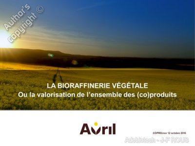 Intervention de Jean-François Rous, directeur Recherche et Innovation du Groupe Avril lors du colloque, le 12 octobre - copyright Adebiotech