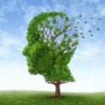 Maladie d'Alzheimer : une révolution thérapeutique est en marche