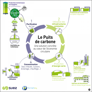 schema Puits de carbone Suez Fermentalg