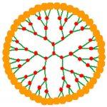 Les innombrables possibilités des dendrimères en nanomédecine